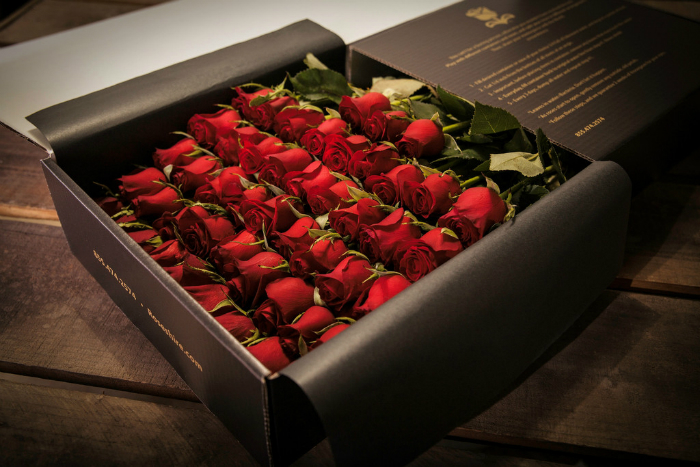 Rose on Valentine's Day?