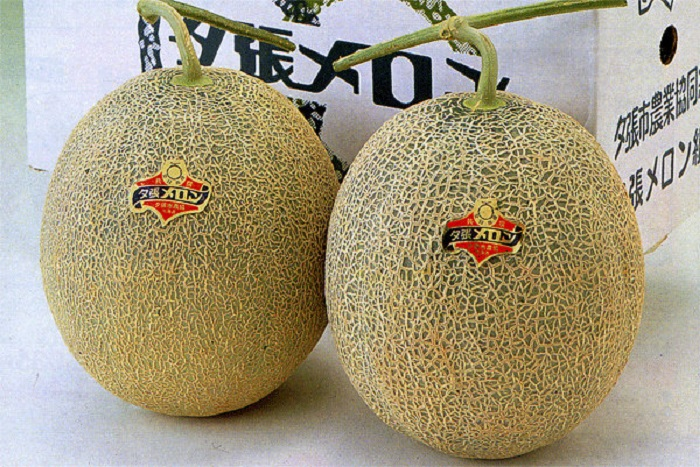 The Most Expensive Fruit You Have Ever Bought! The Most Expensive Fruit You Have Ever Bought! The Most Expensive Fruit You Have Ever Bought! 23