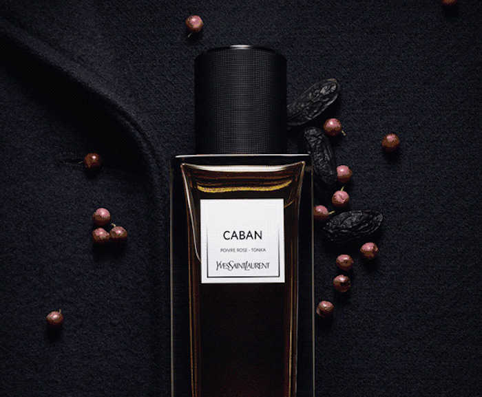 Yves Saint Laurent New Fragrance5 yves saint laurent Yves Saint Laurent New Fragrance Yves Saint Laurent New Fragrance5