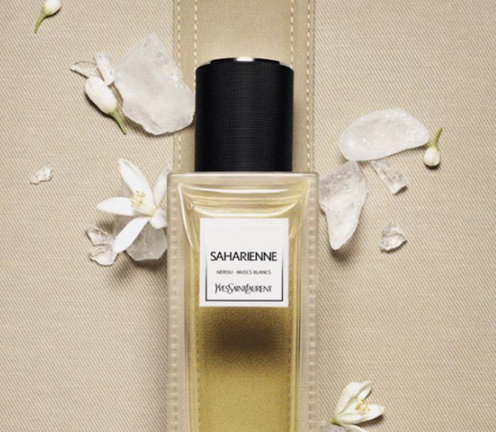 Yves St Laurent collection yves saint laurent Yves Saint Laurent New Fragrance Yves Saint Laurent New Fragrance6