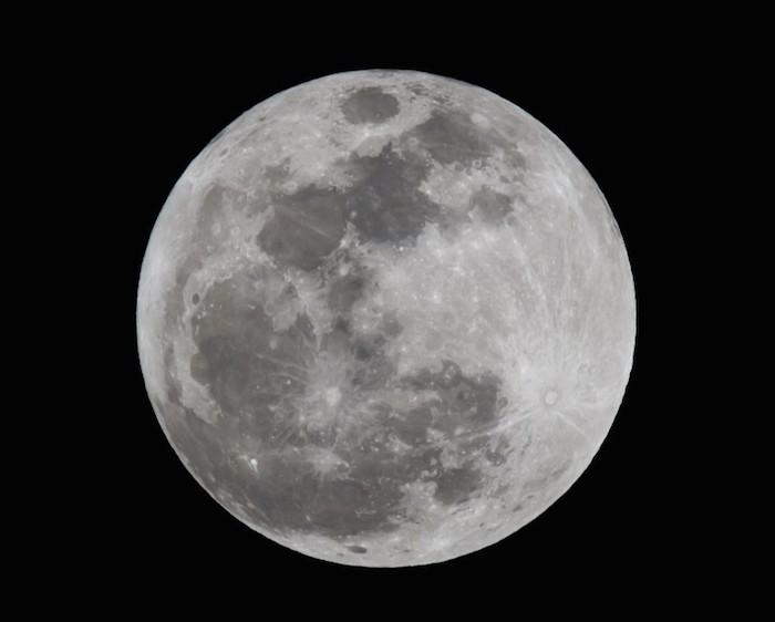 The Moon Express1 The Moon Express The Moon Express The Moon Express1