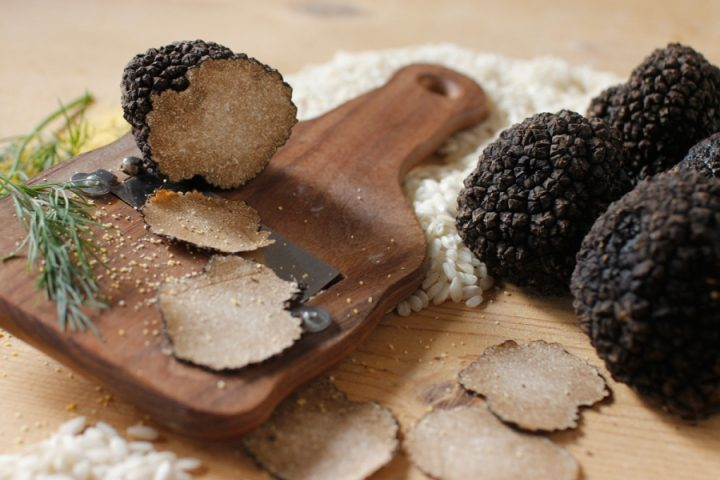 all-about-hunting-truffles5 truffles All about hunting truffles All about hunting truffles5 720x480