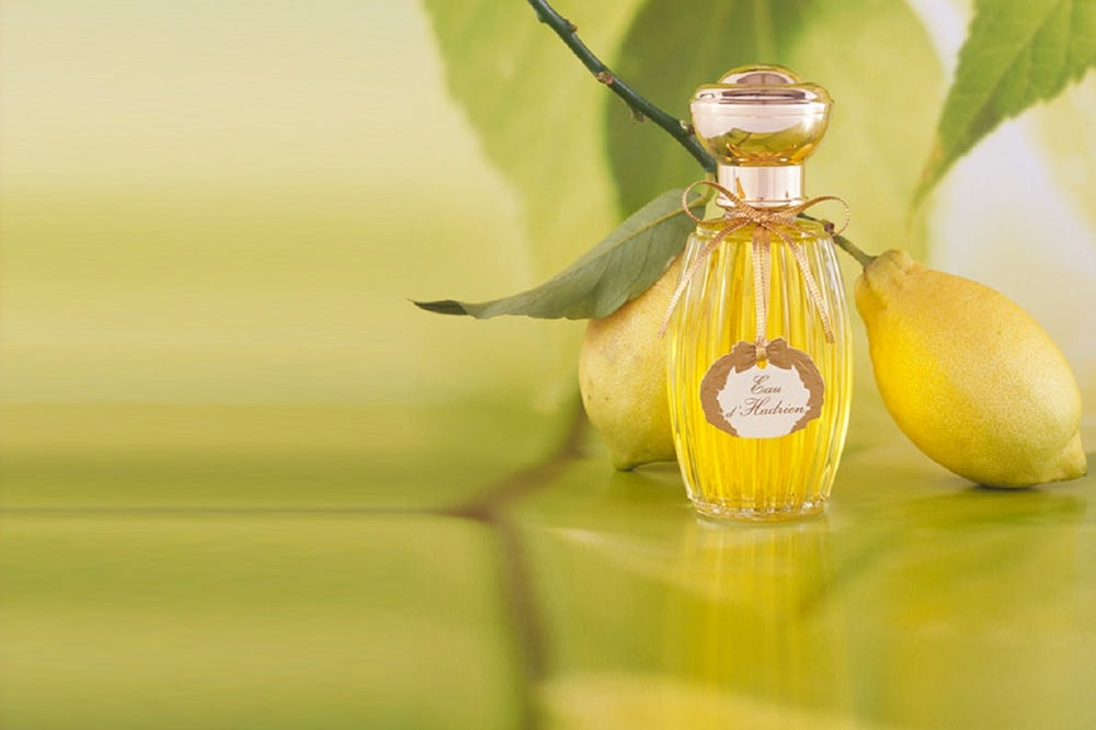 The Most Expensive Perfumes expensive perfumes The Most Expensive Perfumes 1 3