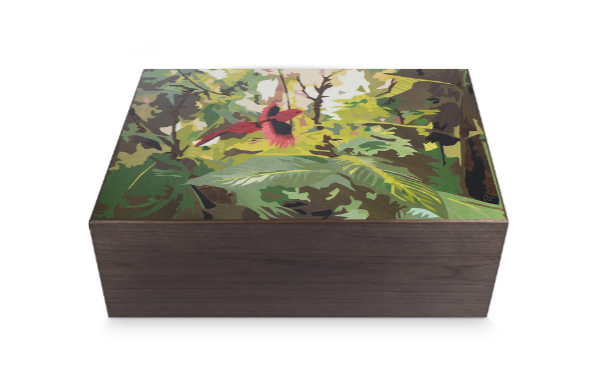 7 Cigar Humidors by Davidoff That You Need to Know Davidoff 7 Cigar Humidors by Davidoff That You Need to Know Damajagua